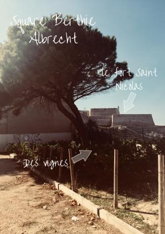 square-berthie-albrecht